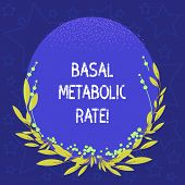 Conceptual Hand Writing Showing Basal Metabolic Rate. Business Photo Showcasing Minimum Energy Level poster