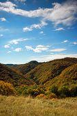 Autumn View Of Nature Park Zumberak