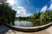 Fisheye View Of The Zoo Pond