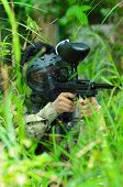 pic of gun shot wound  - Picture of man playing paintball in the jungle - JPG