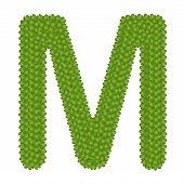 Four Leaf Clover Of Alphabet Letter M