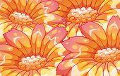 Illustration of the beautiful orange flowers on a white background