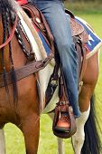 stock photo of western saddle  - Detail of a Western Horse rider  - JPG