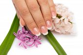Beautifull Manicure With Flowers