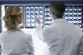Rear view of a male and female doctors discussing brain scans in hospital