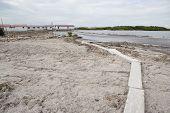 Tidal Flats On The Lagoon