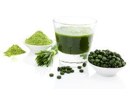 pic of chlorella  - Green food supplement - JPG