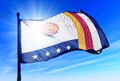 Vargas (Venezuela) flag waving on the wind