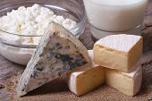 picture of brie cheese  - brie cheese Dor Blue cottage cheese and milk on the table closeup - JPG