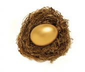 picture of nest-egg  - Golden egg in a nest representing retirement savings or security - JPG