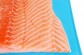 raw salmon fillet on blue plate over white