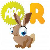 R is for Rabbit
