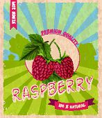Raspberry retro poster