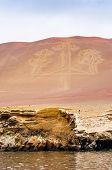stock photo of geoglyph  - Paracas Candelabra - JPG