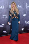 LOS ANGELES - APR 06:  Shakira arrives to the 49th Annual Academy of Country Music Awards   on April
