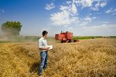 picture of combine  - Young engineer writing notes in book on wheat field combine harvester in background