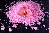 Beautiful blooming orchid flower  and heap of sea salt, isolated on  black