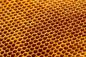 Beautiful Honeycomb Without Honey Texture