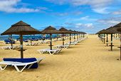 picture of conic  - Straw conical beach umbrellas and white sun loungers extend into the distance of a golden beach under a vivid blue, cloud flecked sky .