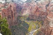 Autumn In Zion Np