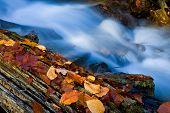 Nice mountain brook in autumn time