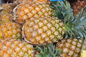 Fresh Pineapple In The Market