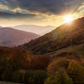 Autumn Forest On A  Mountain Slope At Sunset