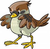 image of ares  - Children vector illustration of young brave sparrow - JPG