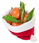 Santa Claus hat`s full  tangerines fruits  isolated on a white background