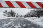 picture of slippery-roads  - Road closed for ice with fallen trees in background - JPG
