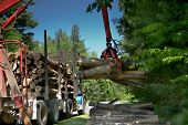 picture of logging truck  - Logging transport truck delivering a load of firewood - JPG