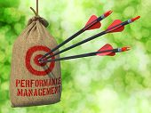 Performance Management - Arrows Hit in Red Target.