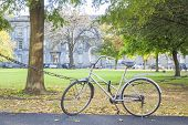 Bike At The Park