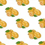 picture of kumquat  - Seamless pattern with kumquat - JPG