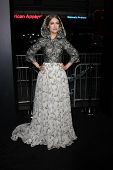 LOS ANGELES - DEC 10:  Joanna Newsom at the