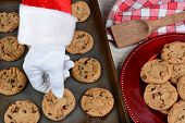 Closeup of Santa Claus taking a fresh baked cookie from a baking sheet. A plate of chocolate chip cookies is to the side. Horizontal format showing only Santas gloved hand.