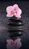 Wet Spa Stone Pyramid And Orchid Flower With Reflection