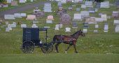 Amish Carriage & Graveyard