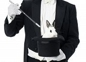 image of top-hat  - Appearance of rabbit inside magician top hat - JPG