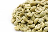 picture of green-beans  - green  - JPG
