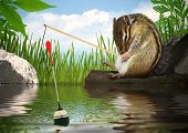 stock photo of chipmunks  - Funny chipmunk fishing with fishing - JPG