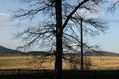 stock photo of bohemia  - The Lusatian Mountains in Northern Bohemia - JPG