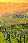 Italian Chianti landscape