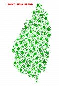 Vector Cannabis Saint Lucia Island Map Collage. Template With Green Weed Leaves For Weed Legalize Ca poster