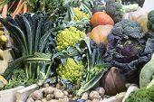 Many Varied Vegetables For Sale At Borough Market poster
