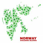 Vector Marijuana Svalbard Islands Map Mosaic. Template With Green Weed Leaves For Marijuana Legalize poster