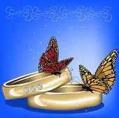 Wedding Background With Rings And Butterflies