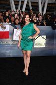 LOS ANGELES - NOV 12: Janelle Froehlich kommen in der