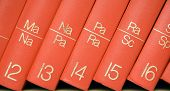 Encyclopedia In A Bookshelf (close View)