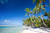 Beautiful beach at Tikehau atoll in French Polynesia